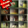 12 Animated Horse Puzzles All in One Game! Great Animal Photo Animation Puzzles With Horses and Ponies For Children & Riding Lovers! Many Games, Best Deal! Interactive Challenge For Kids To Learn Logical Thinking with Fun